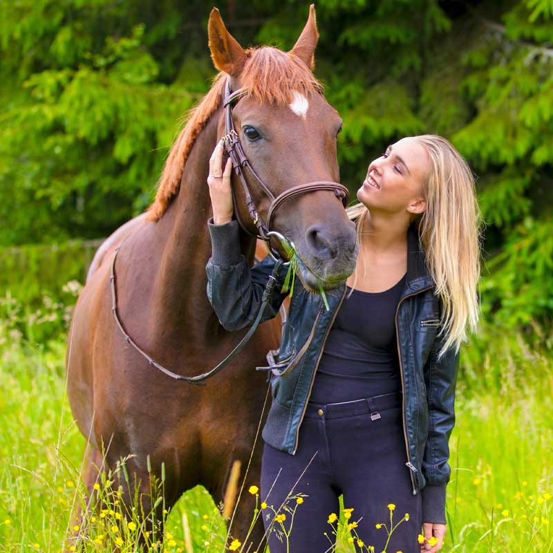 fuetterberatung-pferd-fuetterungsberatung-pferde-pferdeernaehrung-pferdeernaehrungsberatung-muenchen-augsburg-starnberg-fuerstenfelbdruck-mindelheim-buchloe